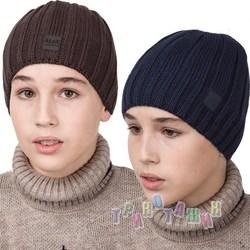 Зимняя шапка для мальчика подростка на флисе (м.AL17042)