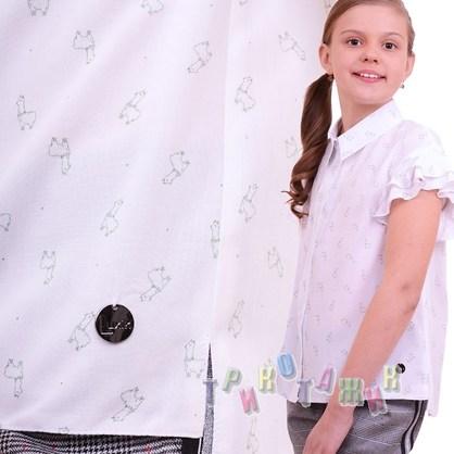 Блуза Энн