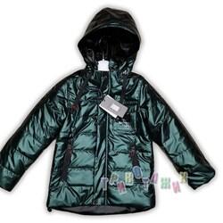 Куртка демисезонная, 1130