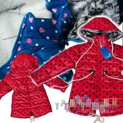 Куртка для девочки Зина (Украина). Сезон Зима.